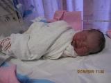 jaynie-new-born-00003