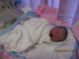jaynie-new-born-00004