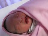 jaynie-new-born-00012